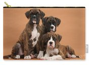 Three Boxer Puppies Carry-all Pouch