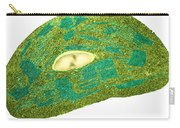 Tomato Chloroplast, Tem Carry-all Pouch