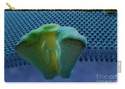 Transmembrane Receptor Carry-all Pouch