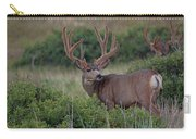 Two In The Bush Carry-all Pouch by Jim Garrison