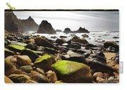 Ursa Beach Carry-all Pouch