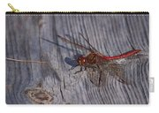 Vagrant Darter Carry-all Pouch