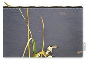 Water Scene Carry-all Pouch