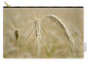 Wheat Carry-all Pouch