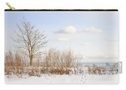 Winter Shore Of Lake Ontario Carry-all Pouch by Elena Elisseeva