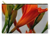 2013 Day Lilies Carry-all Pouch