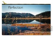 21042 Perfection 2 Carry-all Pouch