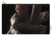 Head Louse Carry-all Pouch