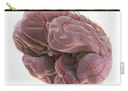 Brain With Blood Supply Carry-all Pouch