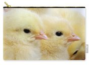 Poussin Carry-all Pouch