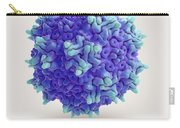 Adeno-associated Virus Carry-all Pouch