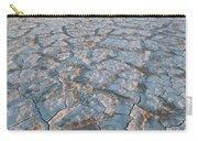 Alvord Desert, Oregon Carry-all Pouch