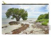 Anne's Beach-3 Carry-all Pouch