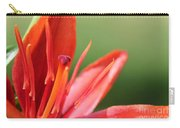 Asiatic Lily Named Red Twin Carry-all Pouch