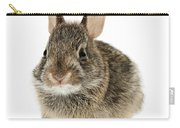 Baby Cottontail Bunny Rabbit Carry-all Pouch by Elena Elisseeva