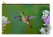 Buff-bellied Hummingbird Carry-all Pouch