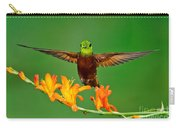 Chestnut-breasted Coronet Carry-all Pouch