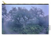Craggy Gardens North Carolina Blue Ridge Parkway Autumn Nc Sceni Carry-all Pouch