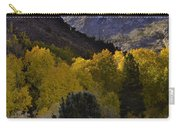 Eastern Sierras In Autumn Carry-all Pouch