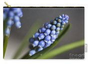 Grape Hyacinth Carry-all Pouch