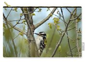 Hairy Woodpecker Carry-all Pouch by Linda Freshwaters Arndt