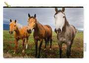 3 Horses Carry-all Pouch