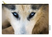 Husky  Carry-all Pouch by Stelios Kleanthous