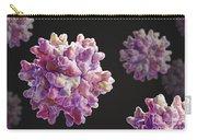 Infectious Bursal Disease Virus Carry-all Pouch
