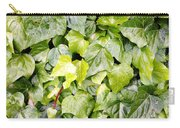 Ivy Carry-all Pouch by Les Cunliffe