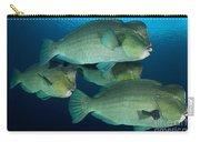 Large School Of Bumphead Parrotfish Carry-all Pouch