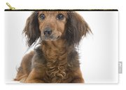 Long-haired Dachshund Carry-all Pouch