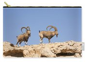 Male Nubian Ibex Carry-all Pouch