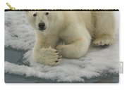 Polar Bear Resting On Ice Carry-all Pouch