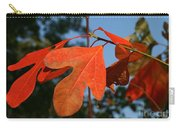 Red Autumn Carry-all Pouch
