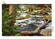 River Rapids Carry-all Pouch by Elena Elisseeva