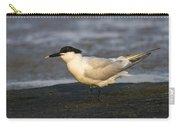 Sandwich Tern Carry-all Pouch