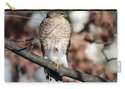 Sharp-shinned Hawk 2 Carry-all Pouch
