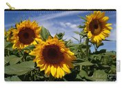 3 Sunflowers Carry-all Pouch by Kerri Mortenson