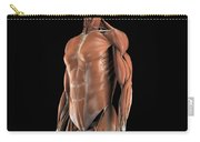 The Muscles Of The Upper Body Carry-all Pouch