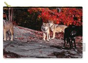 Timber Wolves Under A Red Maple Tree - Pano Carry-all Pouch