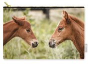 Two Colts Carry-all Pouch