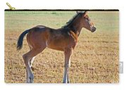 Wild Horse Foal Carry-all Pouch