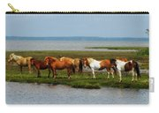 Wild Horses Of Assateague Island Carry-all Pouch