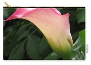 Zantedeschia Named Mozart Carry-all Pouch