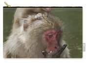 Snow Monkeys, Japan Carry-all Pouch