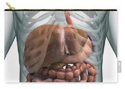 The Digestive System Carry-all Pouch