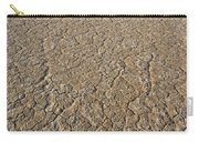 Alvord Desert, Oregon Carry-all Pouch