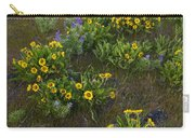 Balsamroot Carry-all Pouch
