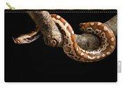 Blood Python Python Brongersmai Carry-all Pouch