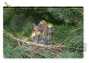 Cedar Waxwings Carry-all Pouch by Linda Freshwaters Arndt